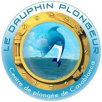 Le Dauphin Plongeur Belyounech